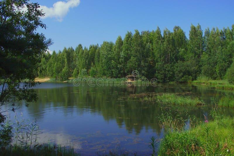 Озеро на сельской местности стоковые фото