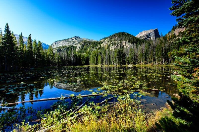 Озеро нимф стоковое фото rf
