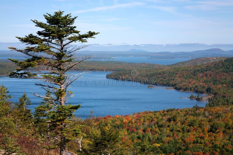 озеро орла стоковая фотография