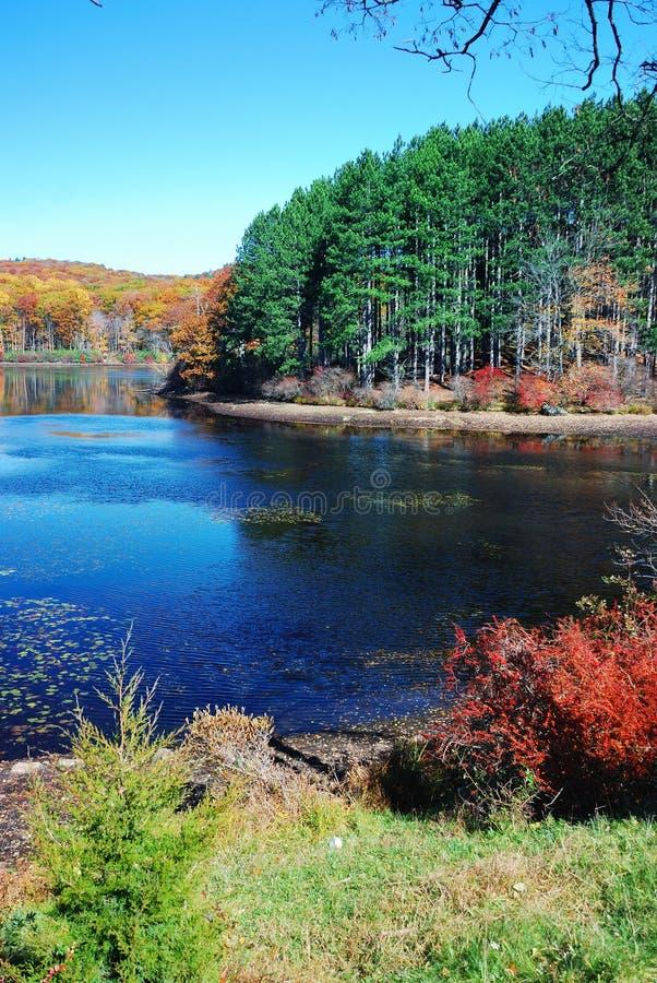 озеро осени стоковое изображение