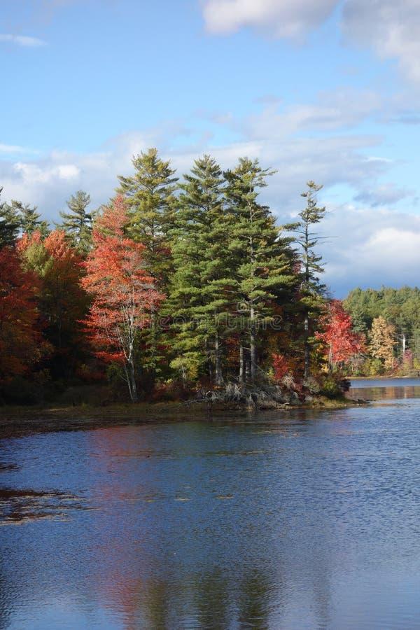 Озеро падения безмятежности красивое с соснами, плотными красными цветами, зелеными цветами и син стоковые фотографии rf