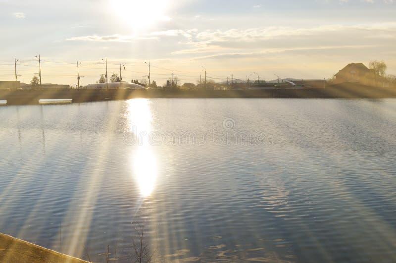 Озеро парк с красивыми отражениями на времени весны стоковая фотография rf