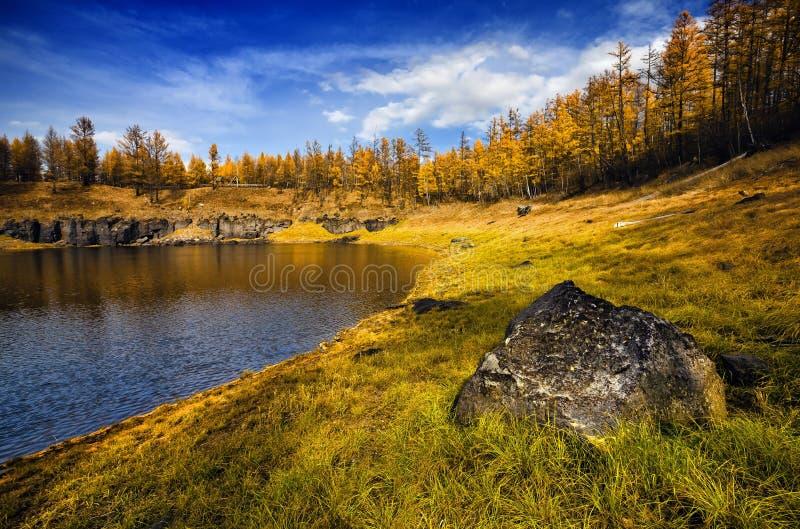озеро пущи стоковая фотография
