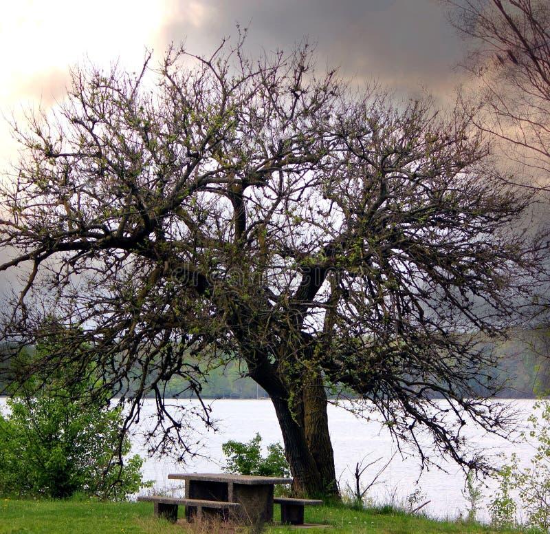 Озеро рек стоковая фотография rf