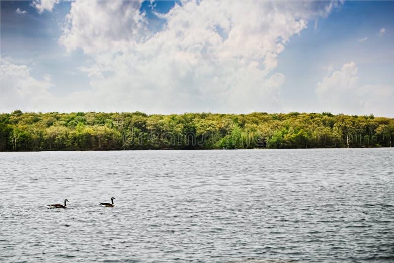 Озеро рек стоковое фото