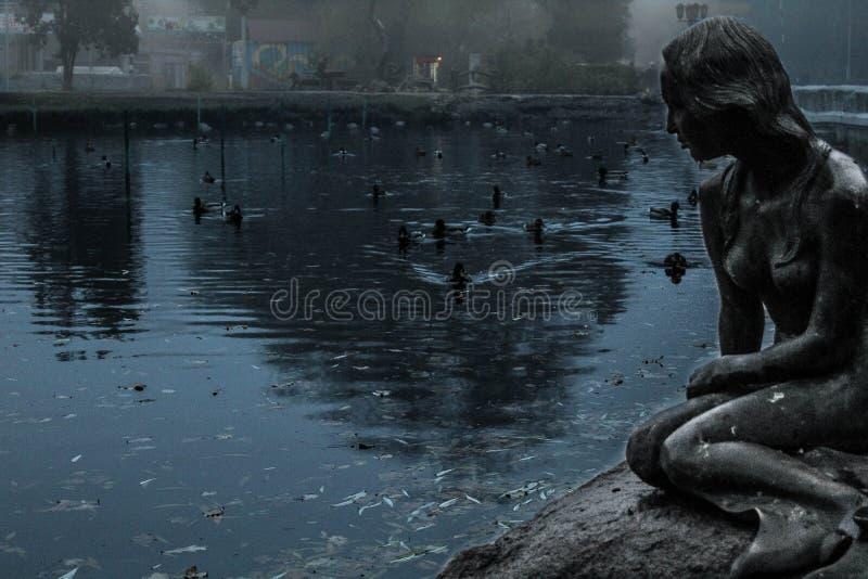 Озеро, русалка, утка, парк, вечер, стоковая фотография rf