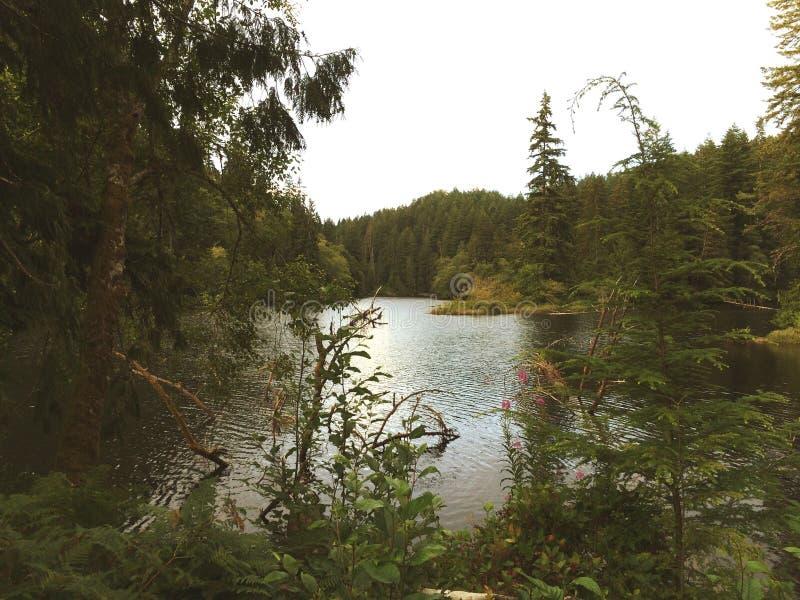 Озеро Сильвия стоковые фотографии rf