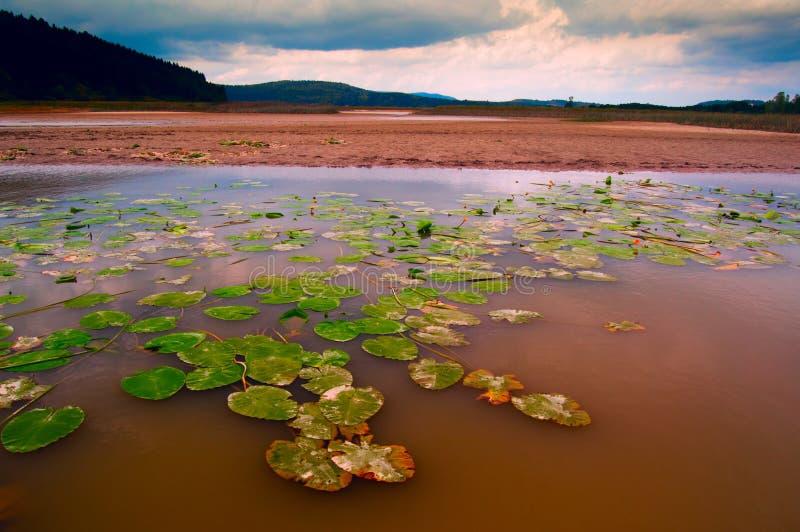 озеро Словения cerknica стоковые изображения rf