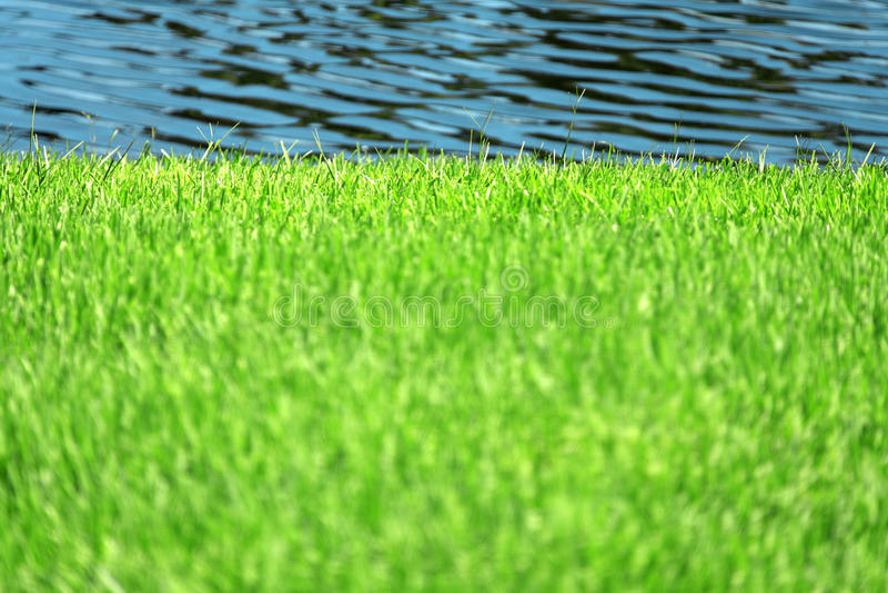 озеро США florida стоковое изображение rf