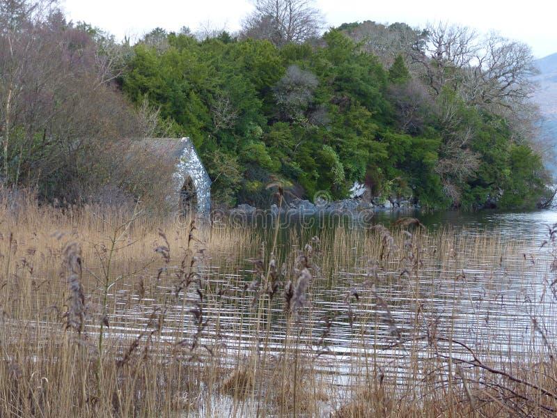 Озеро с деревьями и эллингом стоковое фото rf