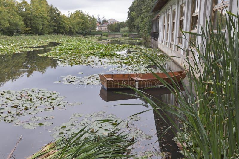 Озеро с лилиями воды в парке Tivoli ljubljana стоковые фото