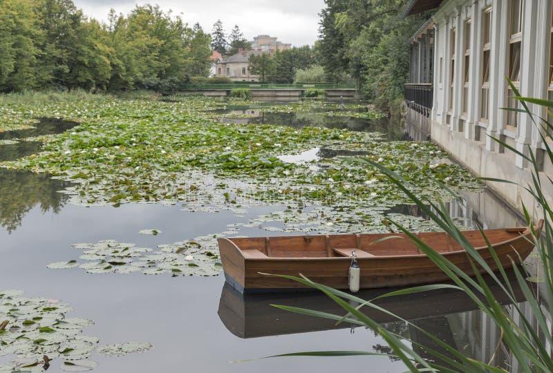 Озеро с лилиями воды в парке Tivoli ljubljana стоковая фотография rf