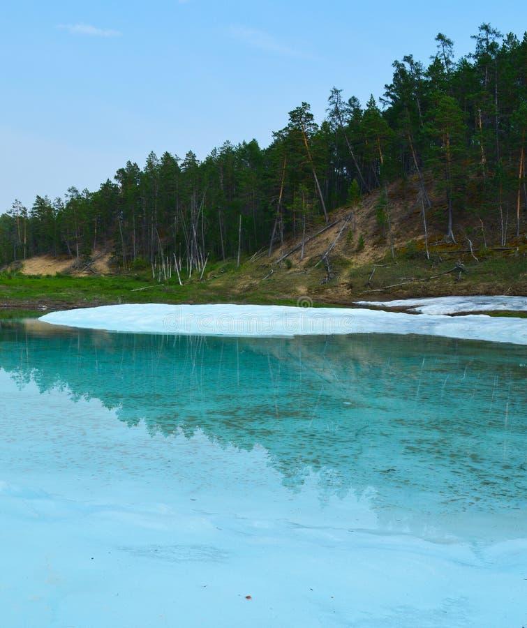 Озеро с льдом и зеленым лесом стоковые изображения rf