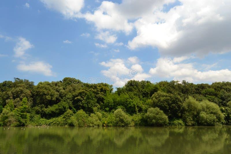 Озеро с природой отражает стоковое изображение rf