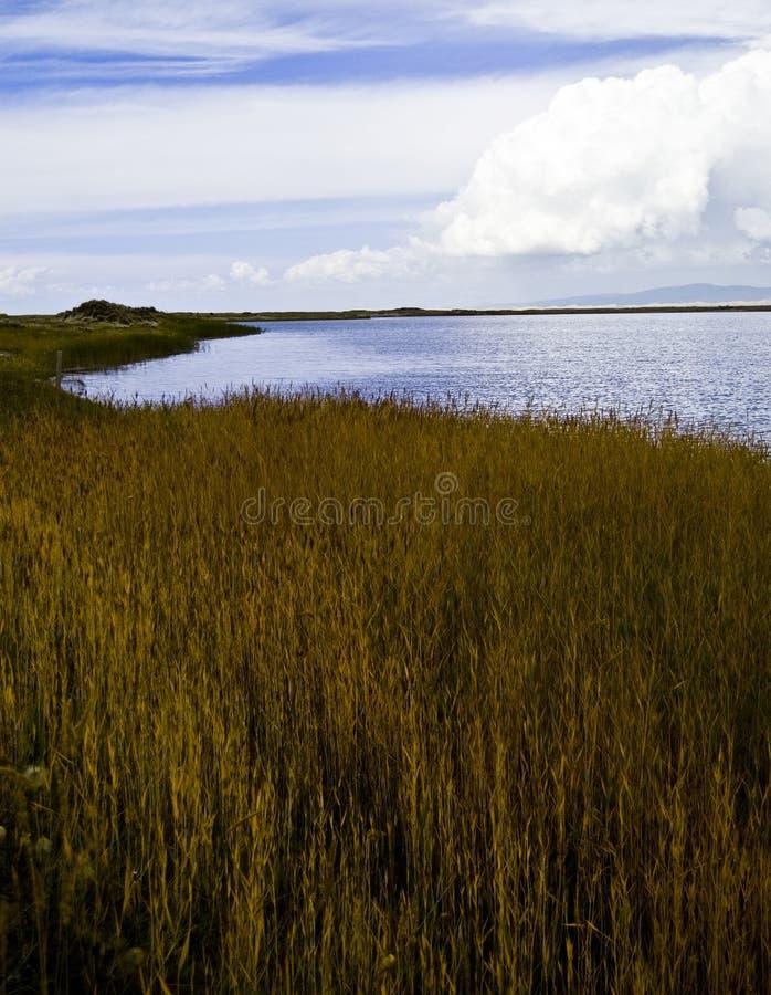 озеро фарфора altiplano стоковая фотография rf