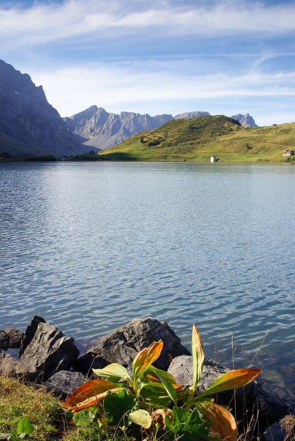 Озеро Швейцария гор Trubsee стоковое изображение rf
