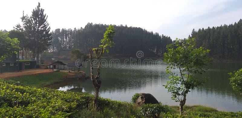 Озеро Шри-Ланка стоковое изображение rf