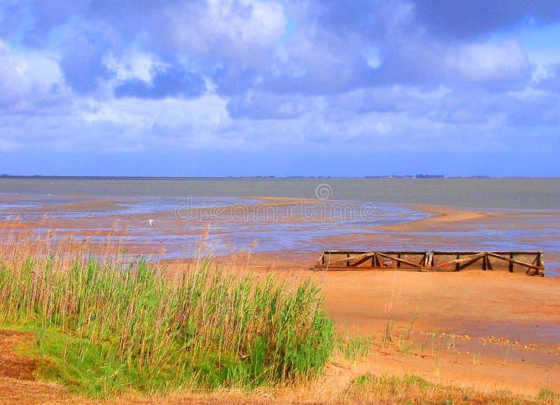 озеро albert низкое стоковое фото rf