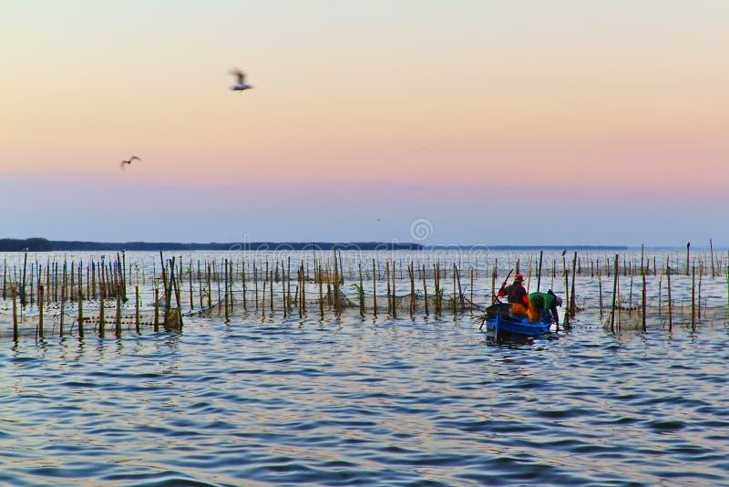 Озеро Albufera на зоре valencia стоковые фото