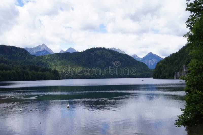 Озеро Alpsee в Баварии стоковая фотография rf