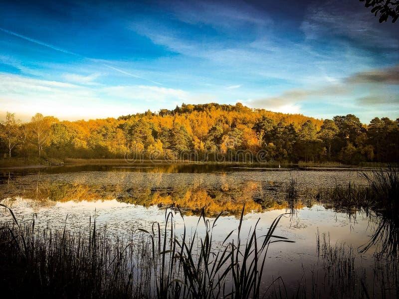Озеро Ampleforth в осени стоковое изображение