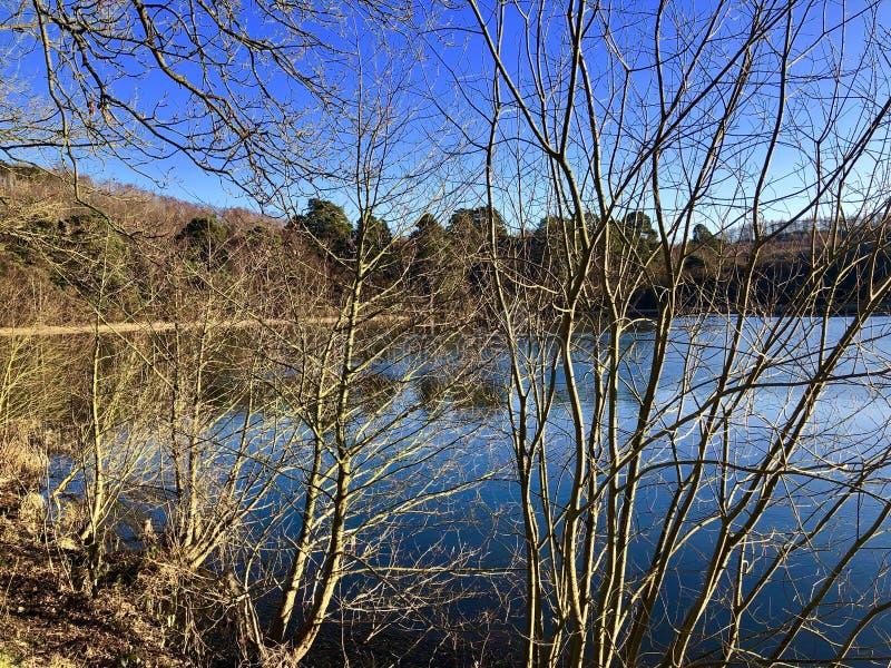 Озеро Ampleforth, Йоркшир стоковое изображение