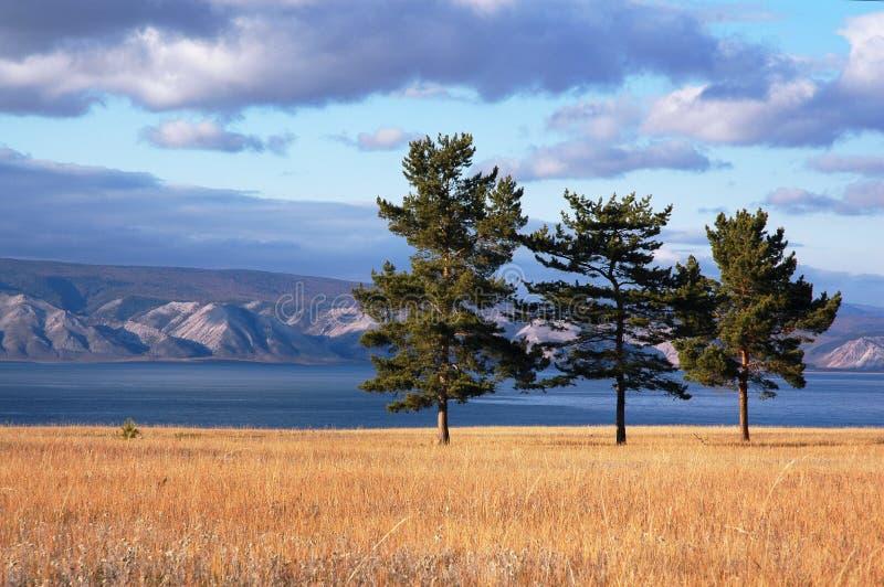 озеро baikal стоковое изображение