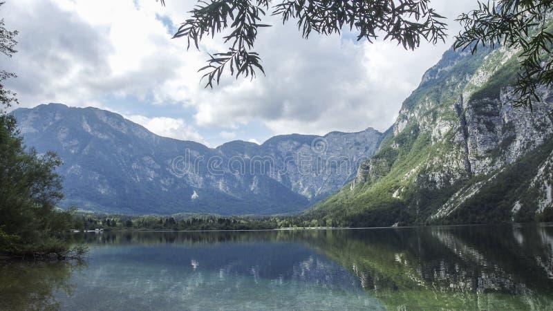 Озеро Bohinj стоковая фотография rf