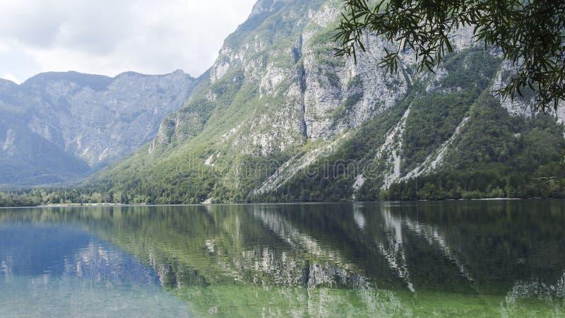 Озеро Bohinj стоковое изображение