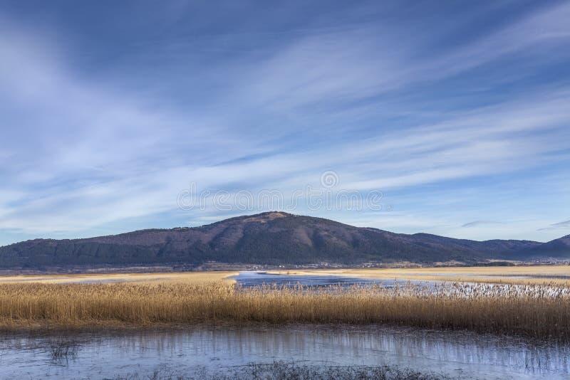 Озеро Cerknica с горой Slivnica, Словенией стоковое фото rf