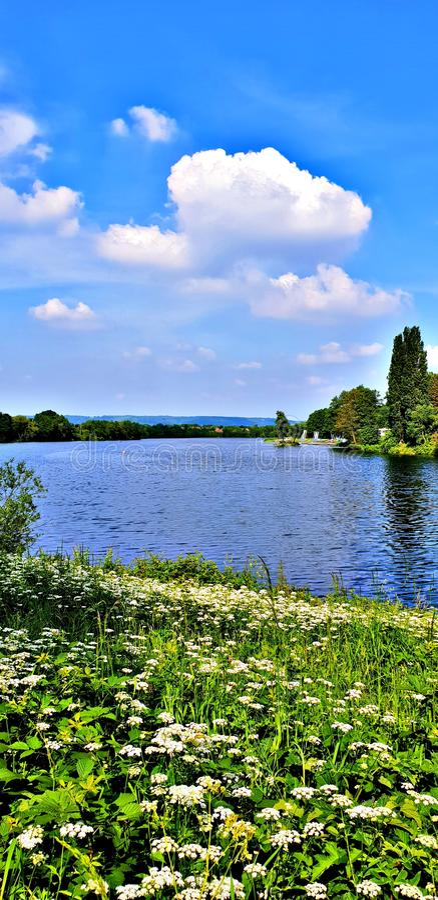 Озеро Chipstead стоковое фото