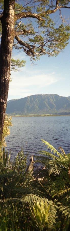 озеро haupiri стоковые изображения