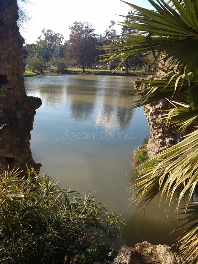 Озеро higgins ` Parque o стоковая фотография