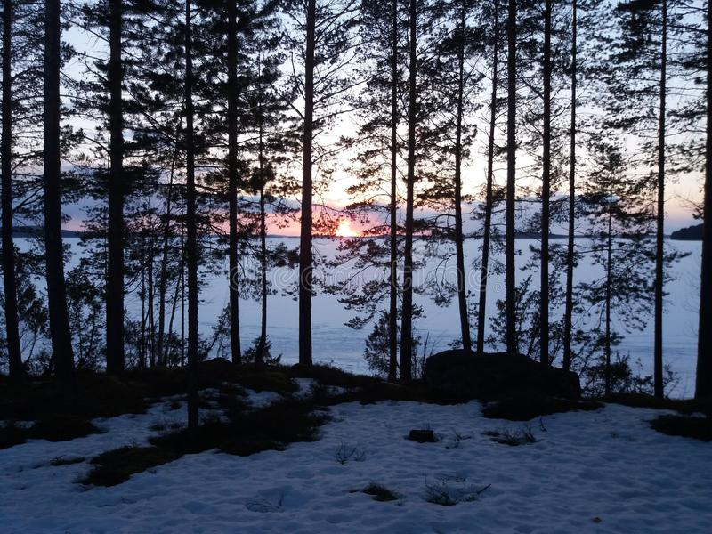 Озеро Juojarvi стоковое изображение
