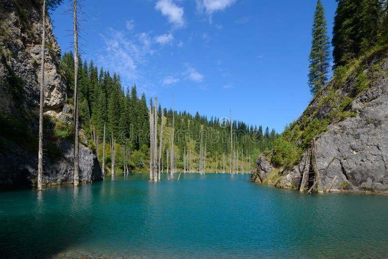 Озеро Kaindy стоковое фото rf
