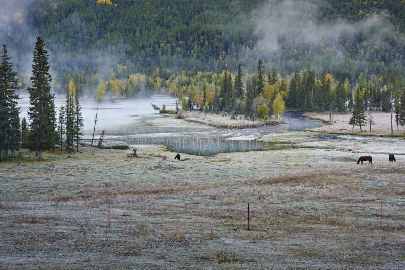 Озеро Kanas стоковые изображения rf