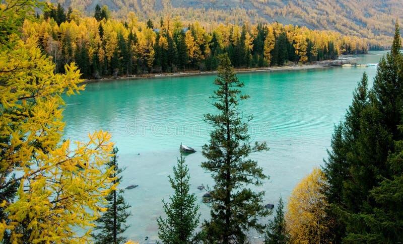 озеро kanas стоковые фотографии rf