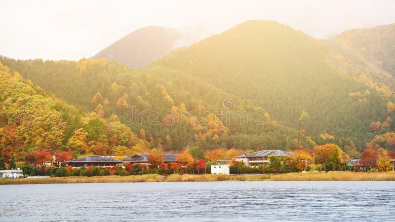 Озеро Kawaguchiko с цветами падения на восходе солнца стоковые фото
