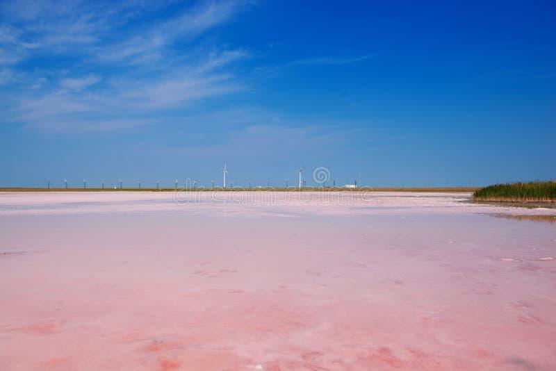 Озеро Lemurian - розовая мечта Kherson стоковое изображение