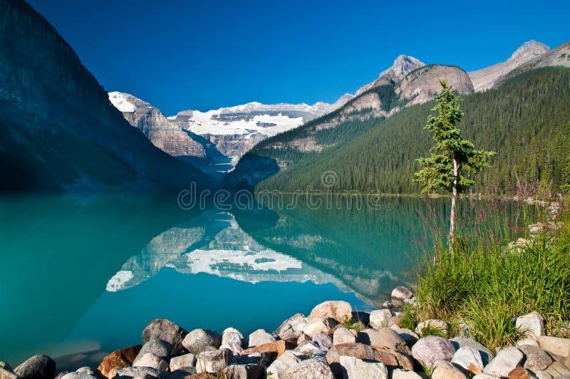 озеро louise стоковые изображения