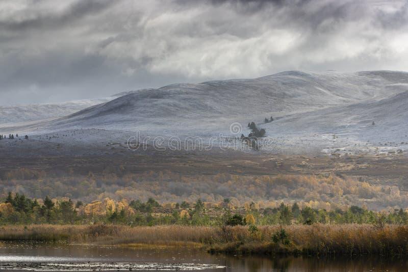 """Озеро Mallachie и Meall """"Bhuachaille в национальном парке Cairngorms Шотландии стоковое изображение"""