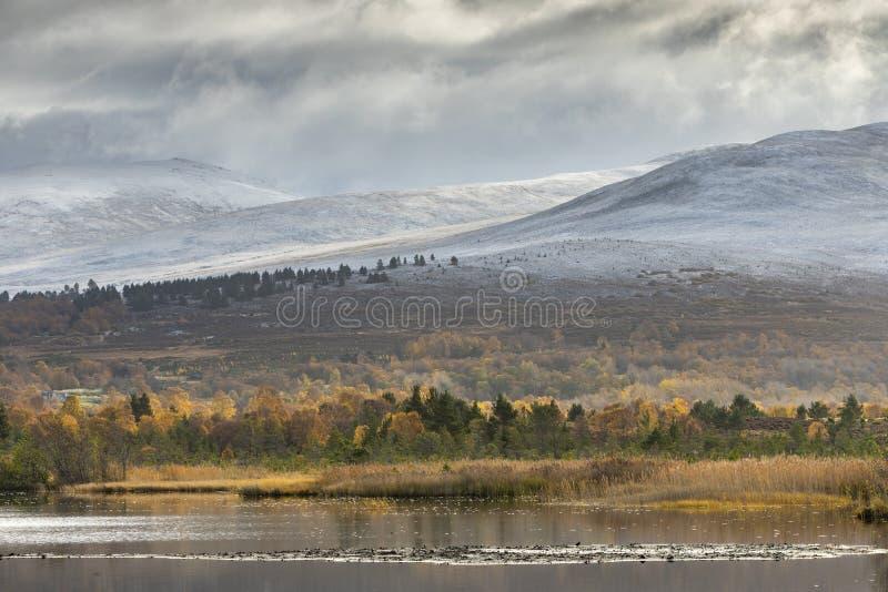 """Озеро Mallachie и Meall """"Bhuachaille в национальном парке Cairngorms Шотландии стоковые изображения"""