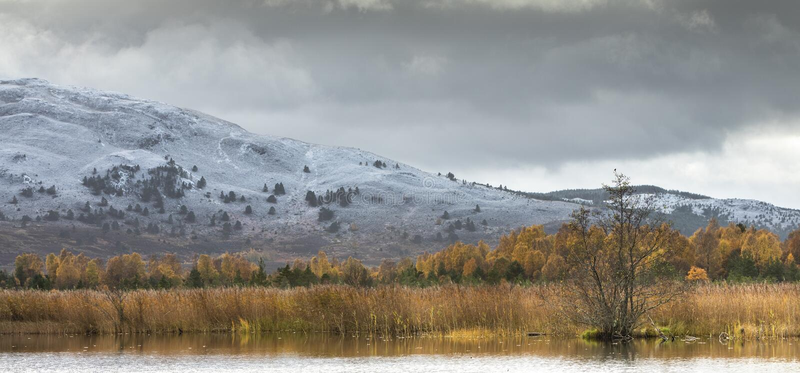 "Озеро Mallachie и Meall ""Bhuachaille в национальном парке Cairngorms Шотландии стоковые фото"