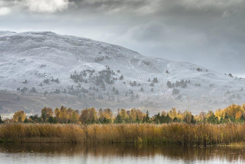 """Озеро Mallachie и Meall """"Bhuachaille в национальном парке Cairngorms Шотландии стоковое фото rf"""