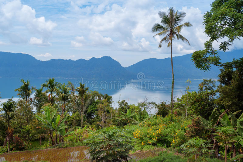 Озеро Maninjau (Danau Maninjau) стоковые фото
