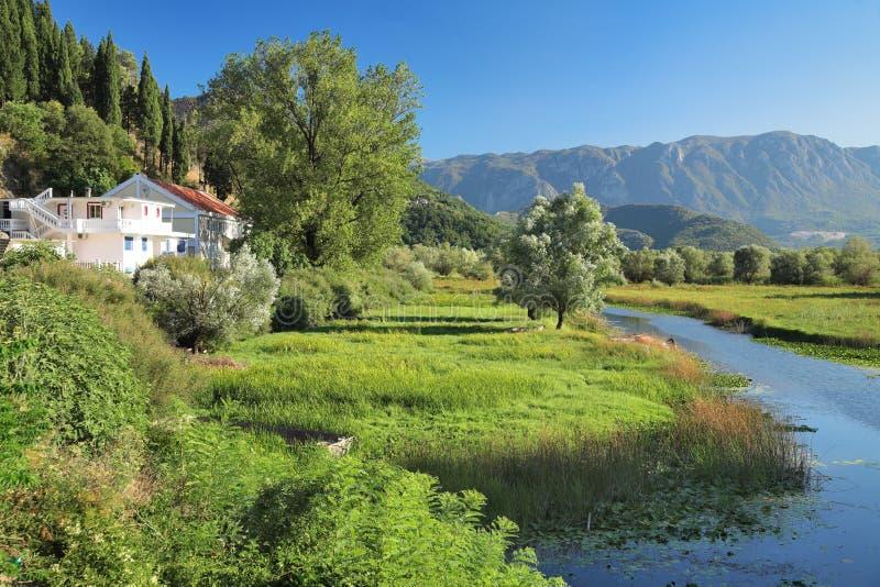 озеро montenegro подпора skadar стоковые фотографии rf