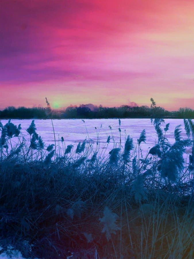 Озеро Naplas стоковое фото rf