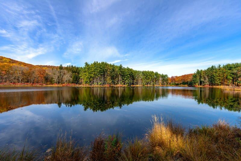 Озеро Nawahunta стоковые изображения