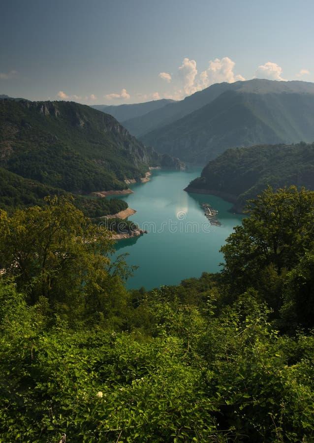 Озеро Piva с рыбными прудами стоковое фото rf