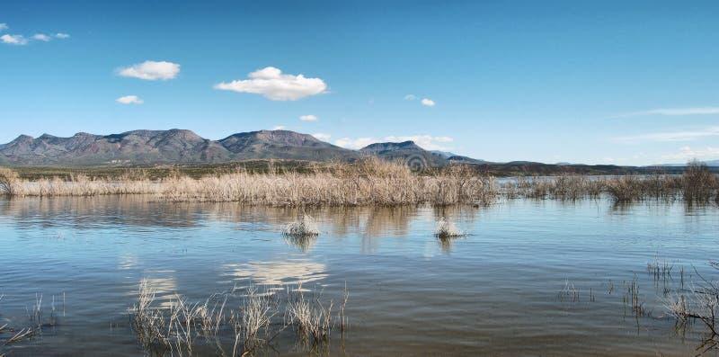 озеро roosevelt стоковая фотография